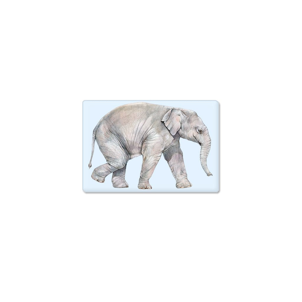 [606-SM] Asian Elephant Calf Single Magnet