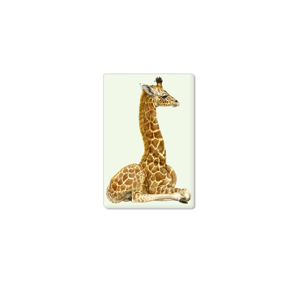 [651-SM] Giraffe Calf Single Magnet