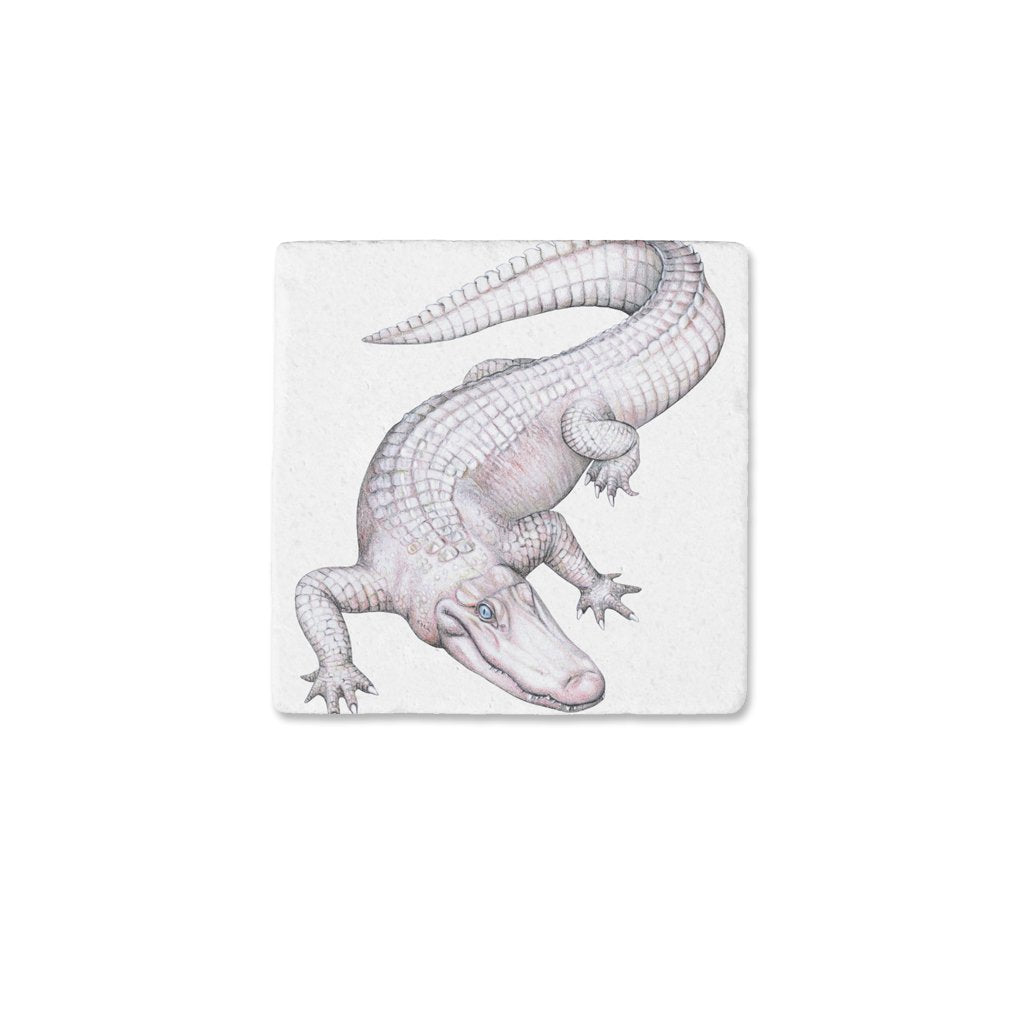 [CST-702] American White Alligator2 Coasters