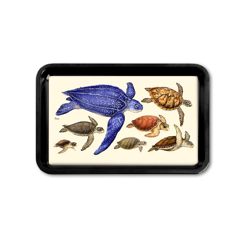 [TRYR-077] Sea Turtles of the World Retro Tray