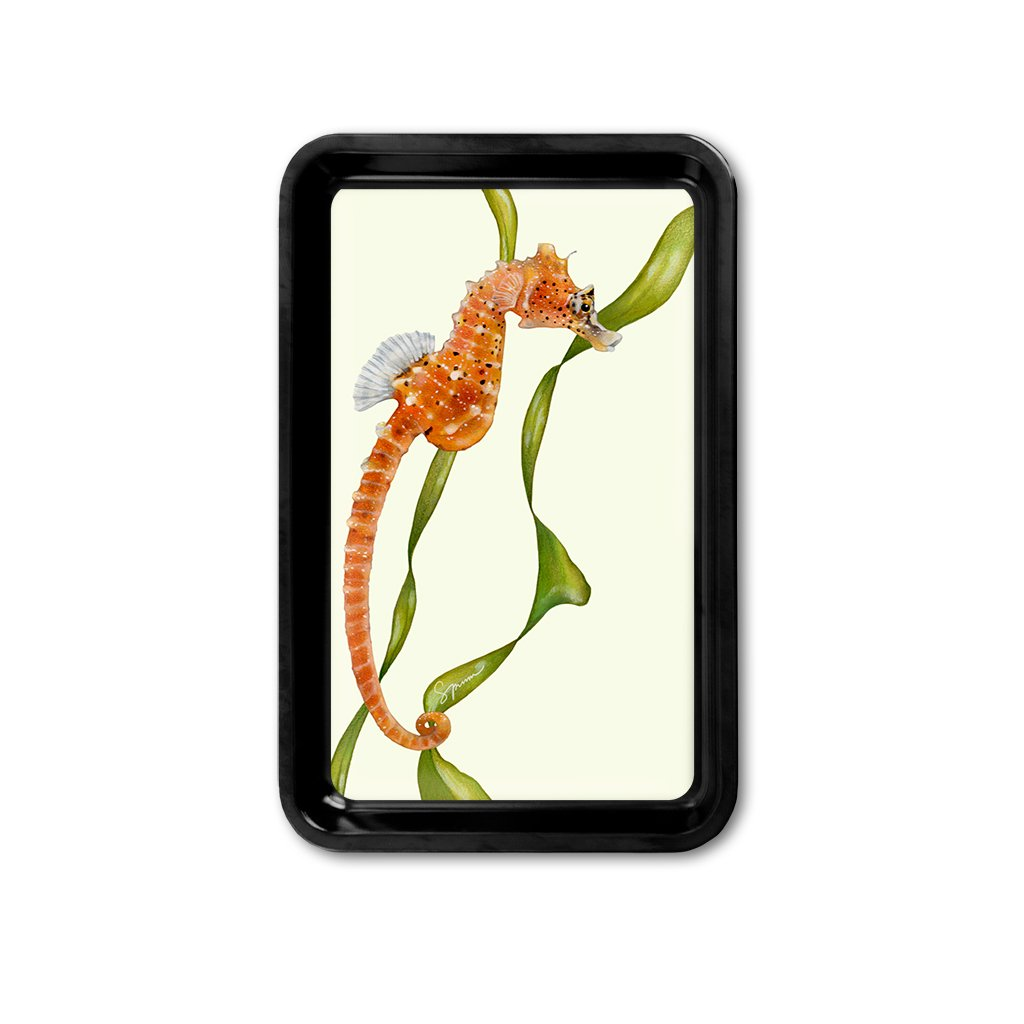 [TRYR-221] Short Snouted Seahorse Retro Tray