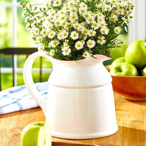 Classic White Farmhouse Styled Pitcher