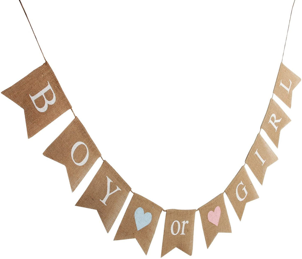 Boy or Girl Banner
