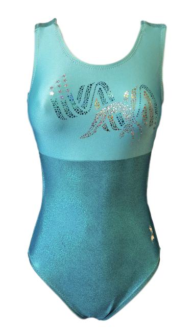 Beautiful blue/green leotard with bling