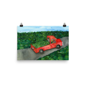 red truck in a field of watermelons