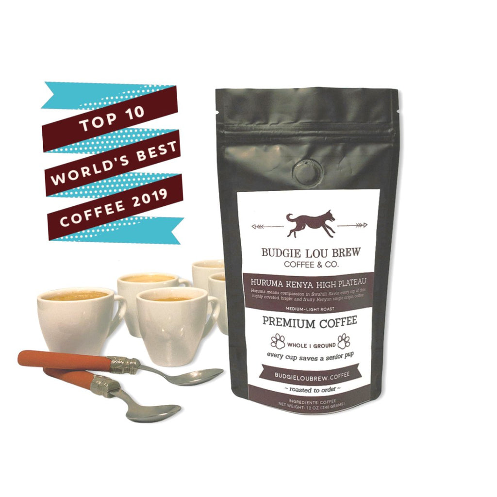 Budgie Lou Brew Coffee & Co. Every Cup Saves a Senior Pup Huruma Kenya High Plateau Single Origin Artisan Roasted Coffee Subscription to Save Senior Dogs beans roast to order. Artisan roasted single origin delivery. Kenya Single origin coffee subscription. Kenya Single Origin Coffee gift.