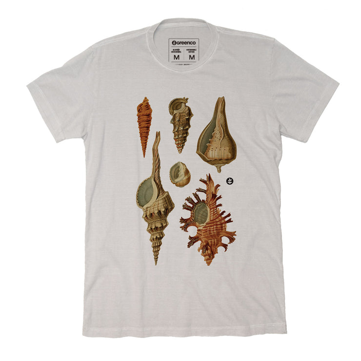 Sustainable Cotton Men's T-Shirt - Shells