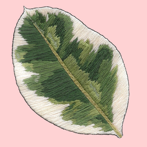 Thread Painting Variegated Rubber Plant Embroidery Kit