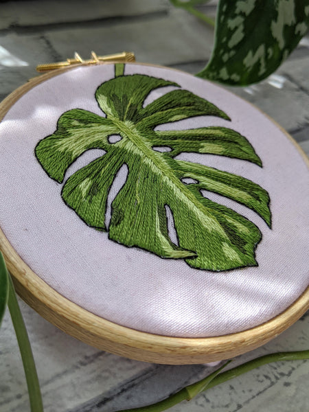 "4"" Monstera Leaf Plants On Pink embroidery"
