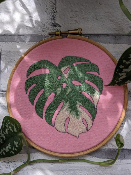"5"" Variegated Monstera Leaf Plants On Pink embroidery"