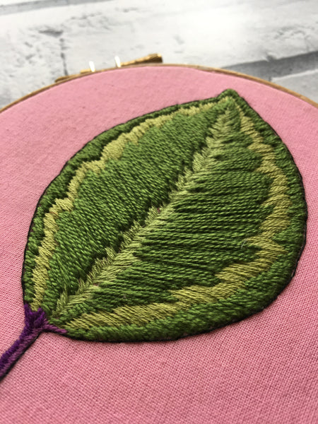 "5"" Calathea Leaf Plants on Pink Embroidery"