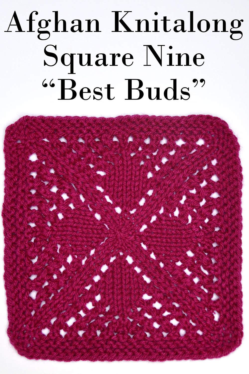 Afghan Knitalong Square 9 - Best Buds Pattern Universal Yarn