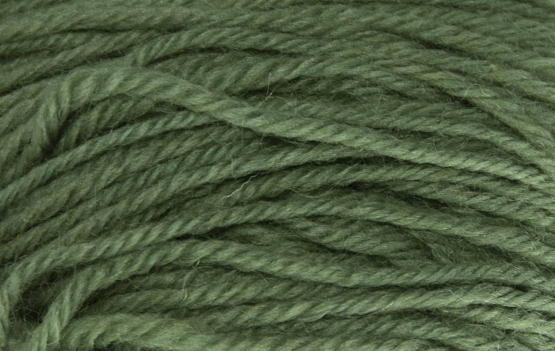 Deluxe Worsted- Last Chance Colors Yarn Universal Yarn 12285 Cactus