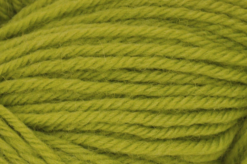 Deluxe Worsted- Last Chance Colors Yarn Universal Yarn 12286 Lime Tree