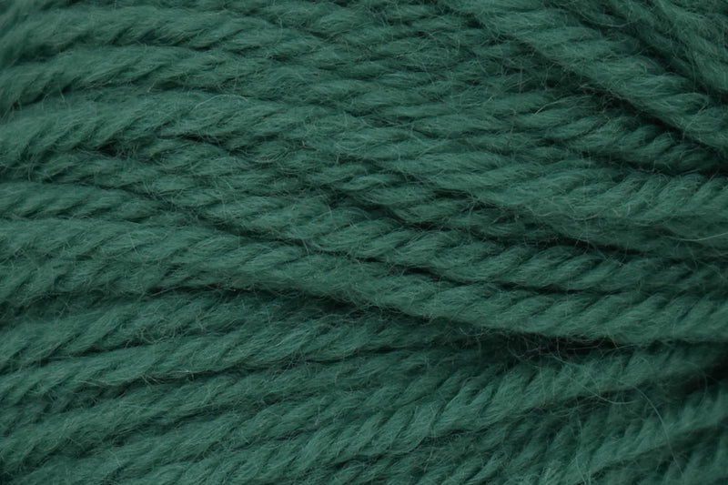 Deluxe Chunky Yarn Universal Yarn 61635 Deep Jungle