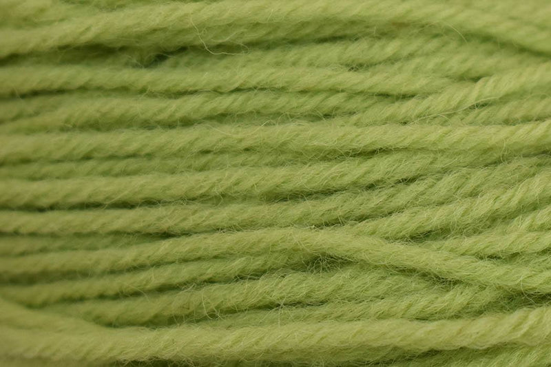 Deluxe Worsted- Last Chance Colors Yarn Universal Yarn 71661 Shadow Lime