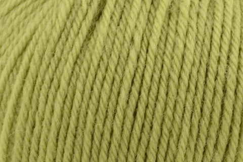 Deluxe Worsted Superwash Yarn Universal Yarn 709 Lime Tree