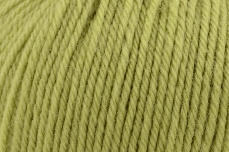 Deluxe Bulky Superwash Yarn Universal Yarn 909 Lime Tree