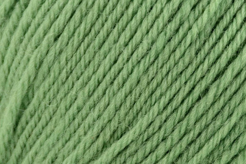 Deluxe Worsted Superwash Yarn Universal Yarn 710 Greenery