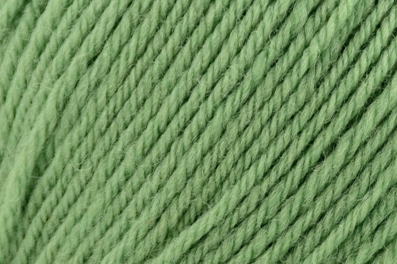 Deluxe Bulky Superwash Yarn Universal Yarn 910 Greenery