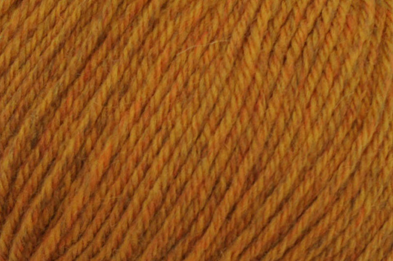 Deluxe Worsted Superwash Yarn Universal Yarn 768 Spice Rustic