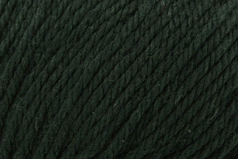 Deluxe Bulky Superwash Yarn Universal Yarn 941 Holly Green