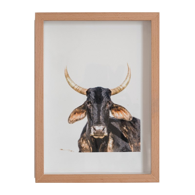 BLACK NGUNI PHOTOGRAPHIC PRINT