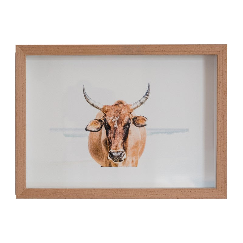 LIGHT TAN NGUNI PHOTOGRAPHIC PRINT