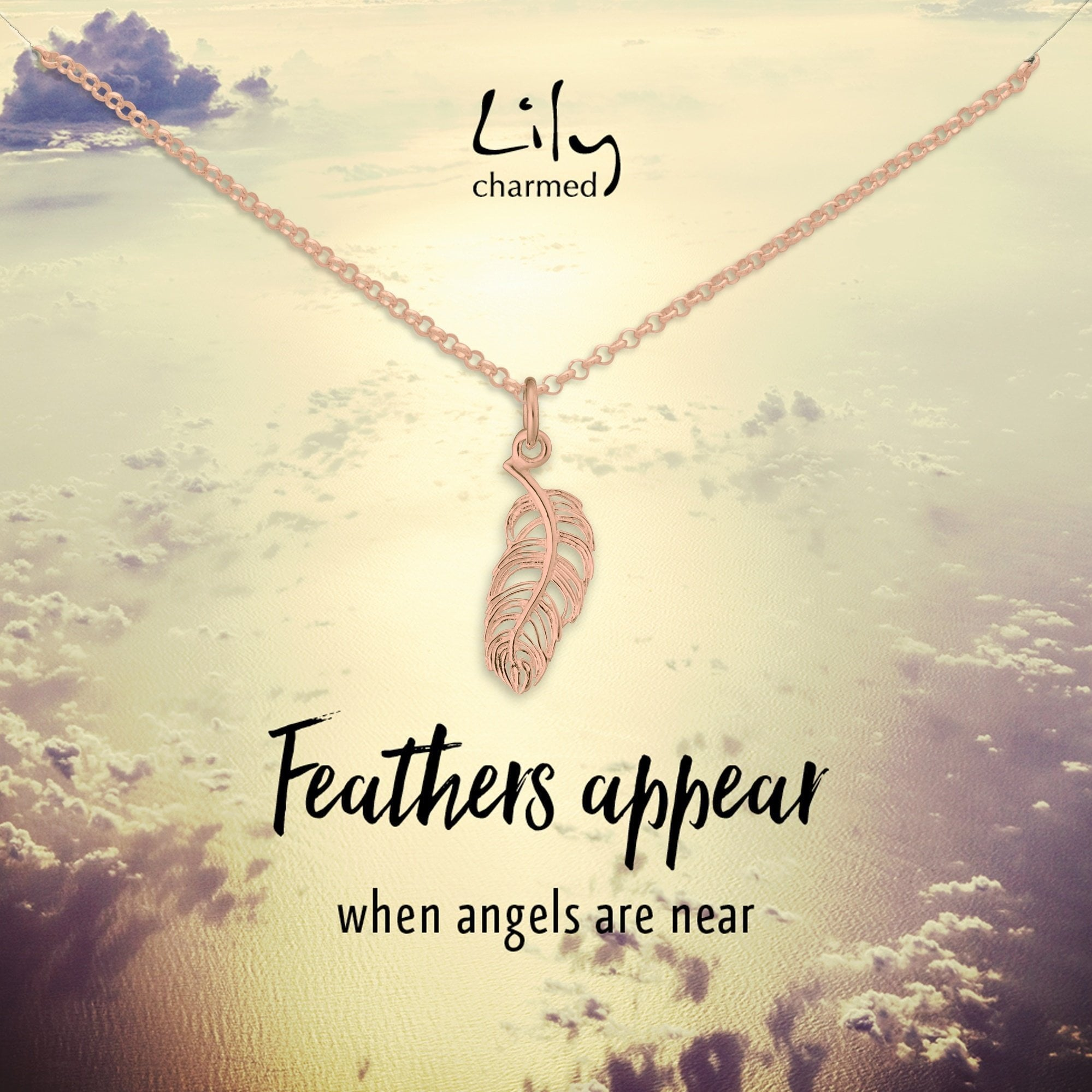 Rose Gold Plated Feather Necklace with 'Feathers Appear' Message