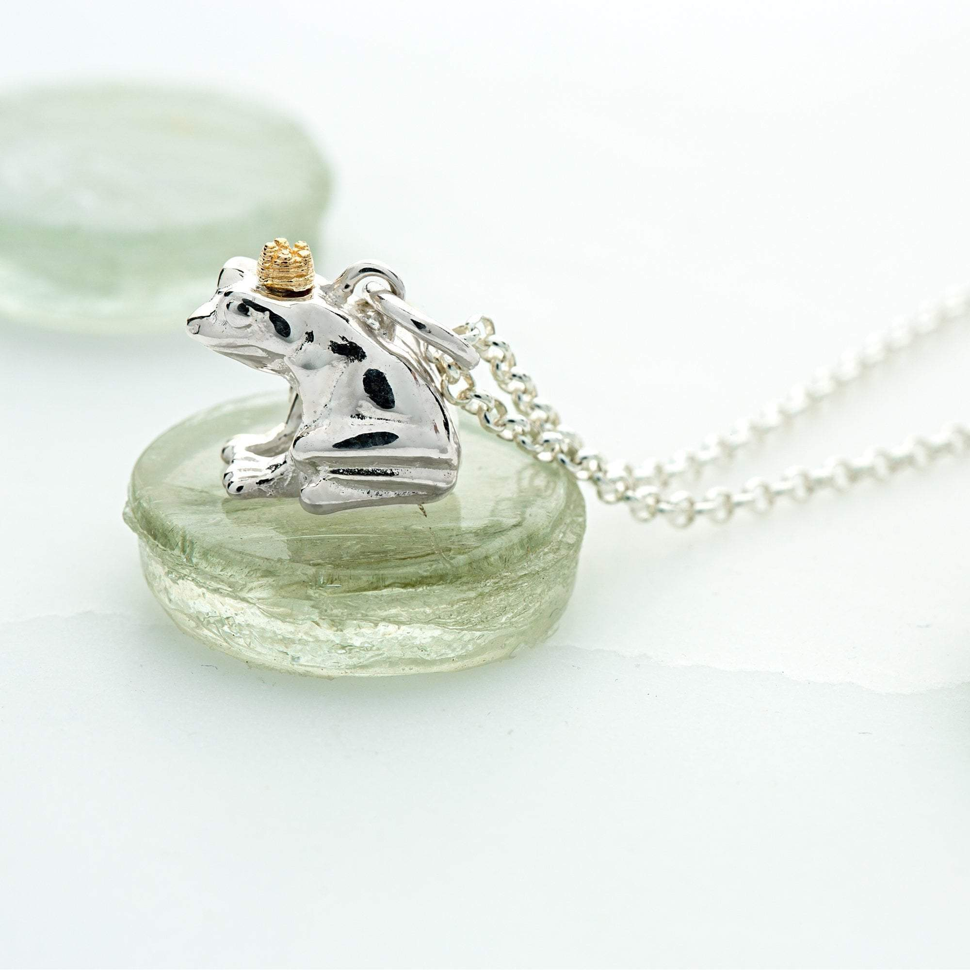Personalised Silver Frog Necklace - Lily Charmed