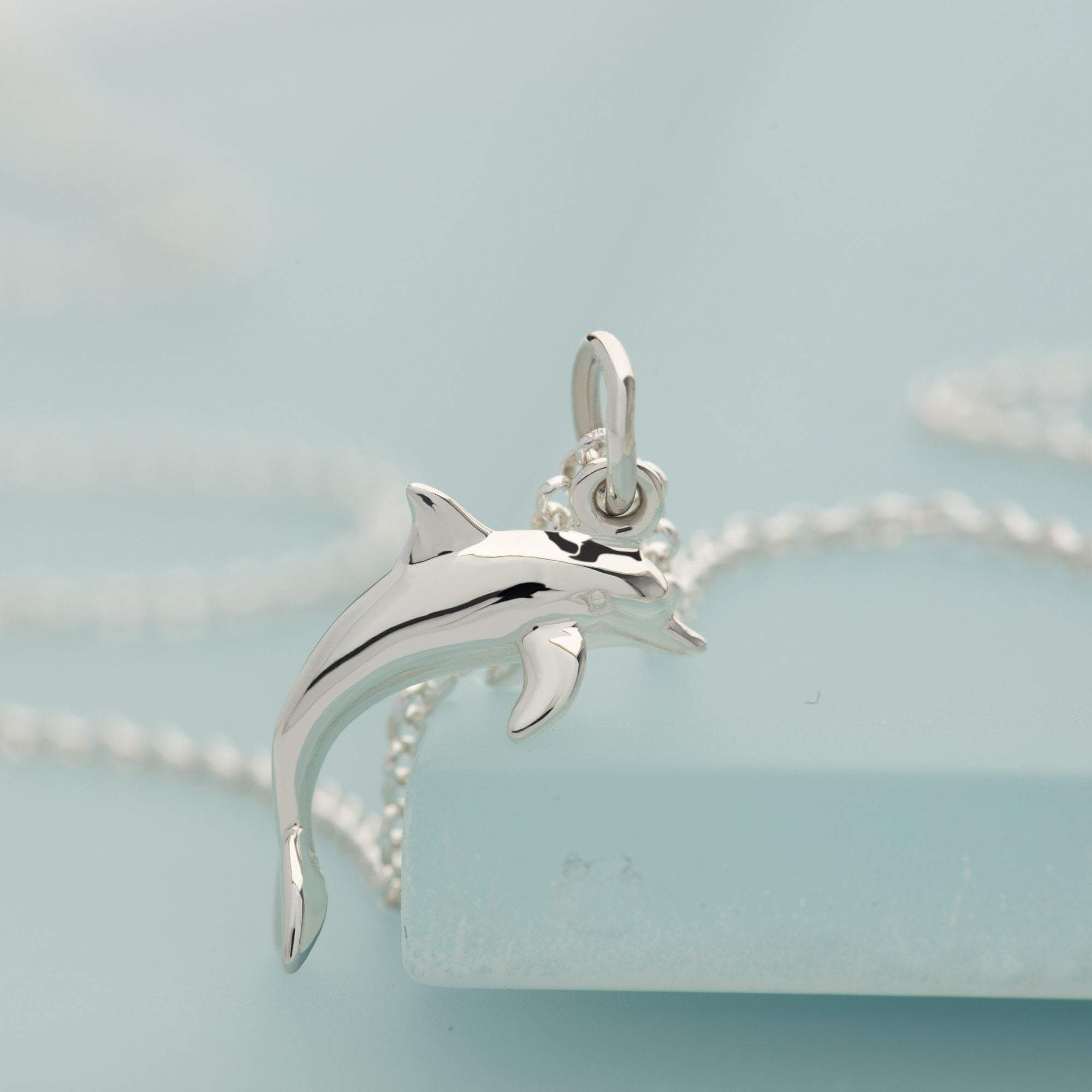 Children's Personalised Silver Dolphin Necklace - Lily Charmed