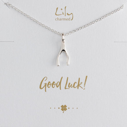 Silver Wishbone Necklace with 'Good Luck' Message