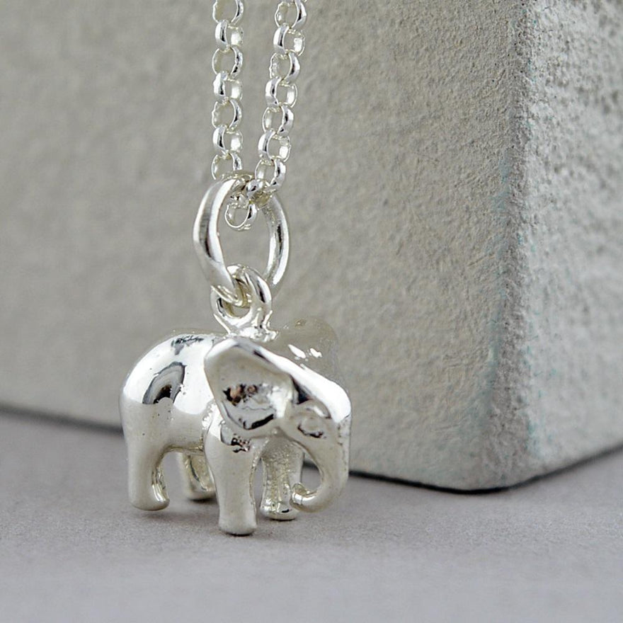 Children's Personalised Silver Elephant Necklace - Lily Charmed