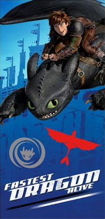 How to Train your Dragon Beach Towel