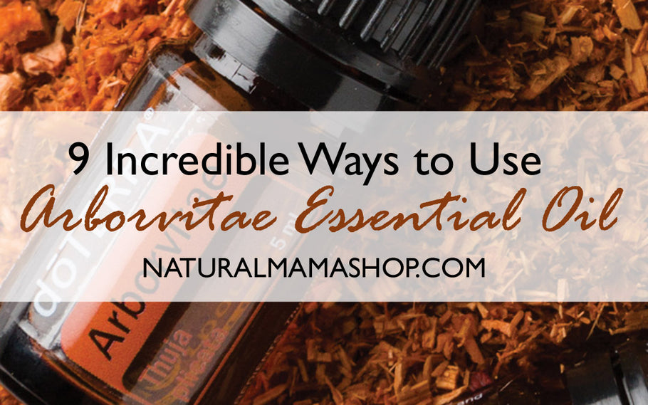 9 Incredible Ways to Use Arborvitae Essential Oil