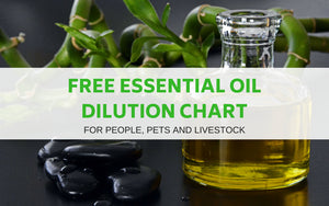 Essential Oil Dilution Chart for People Pets and Livestock