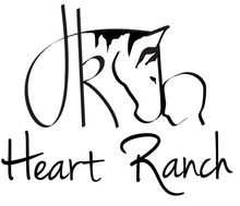 Load image into Gallery viewer, Mercy's Heart Ranch Bracelet