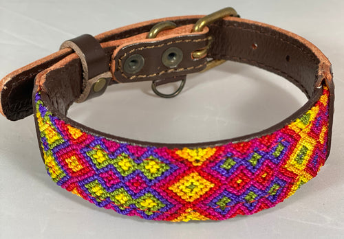 One-of-a Kind Small Dog Collar