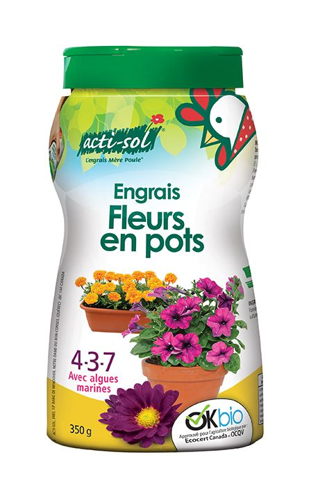 Flower Food 4-3-7 - Cactus en ligne