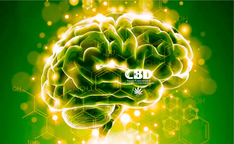 Can cannabis light (CBD) improve the quality of life for Parkinson's patients?