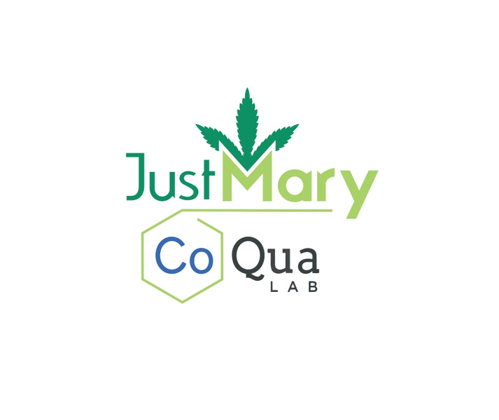 Greater guardianship towards the clients JustMary