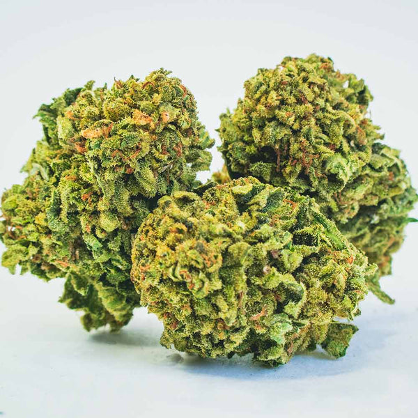 Lemon haze marijuana light: all you need to know about