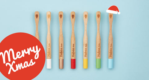 Bamboo Toothbrushes for Christmas for Kids