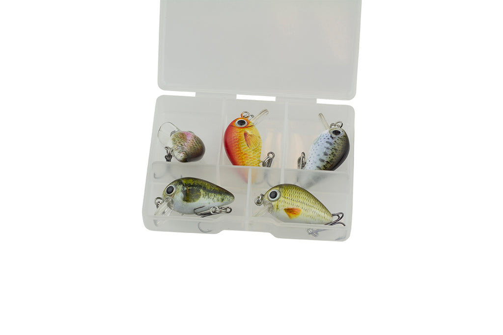 Bubbly B - 6x Set inkl. Box - Freshfishing