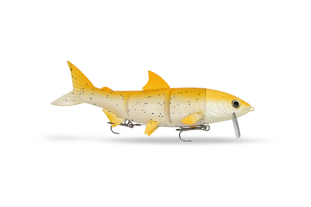 RenkyOne - Spotted Orange - Freshfishing