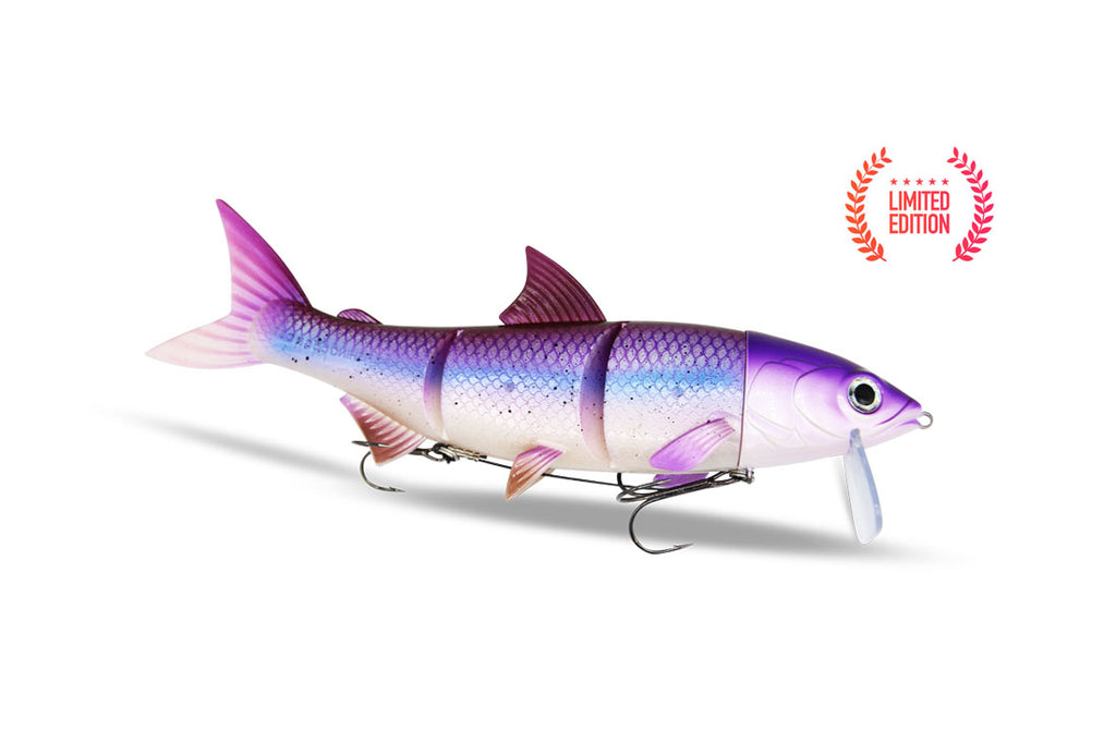 RenkyOne - Purple Lady - Freshfishing