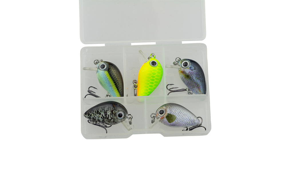 Bubbly A - 6x Set inkl. Box - Freshfishing