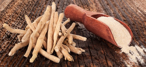 Benefits of Ashwagandha for Women