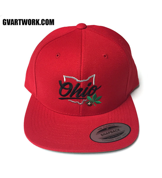 Red OHIO Buckeye State Snap Back Hat