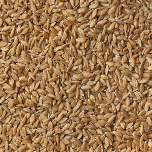 Einkorn Wheat - 25 lbs GB